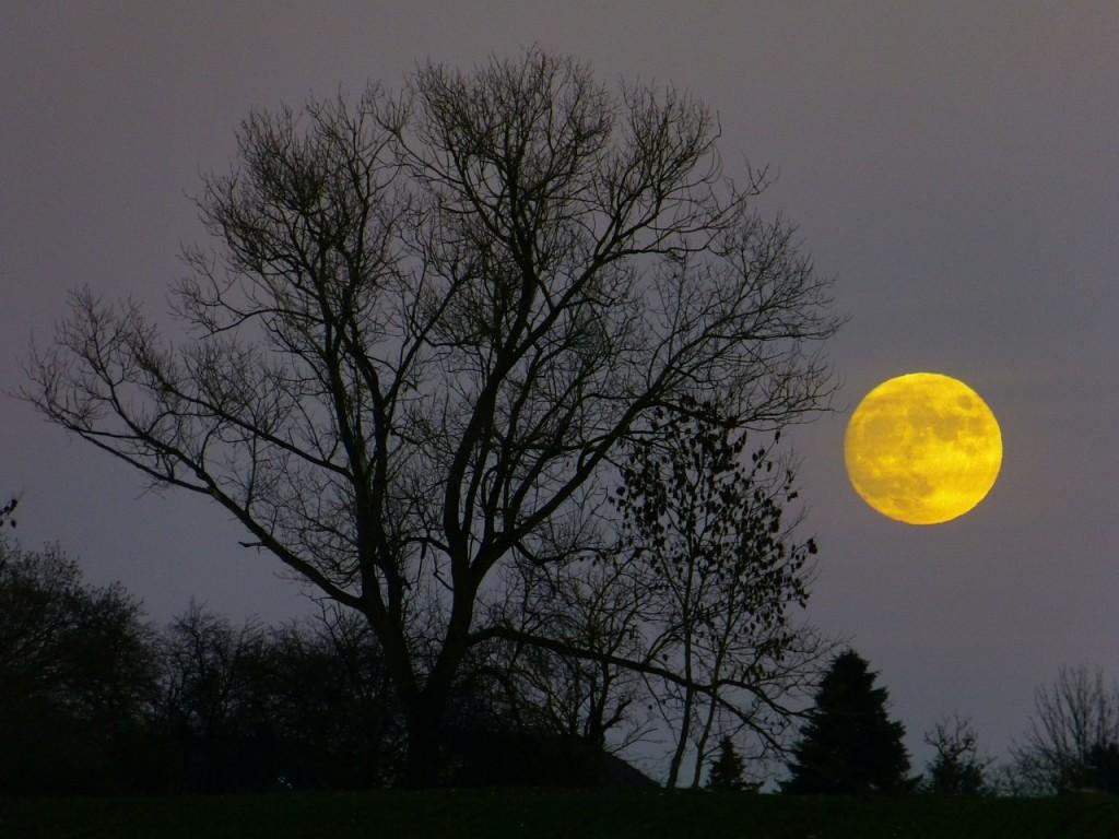 moon-229889_1280
